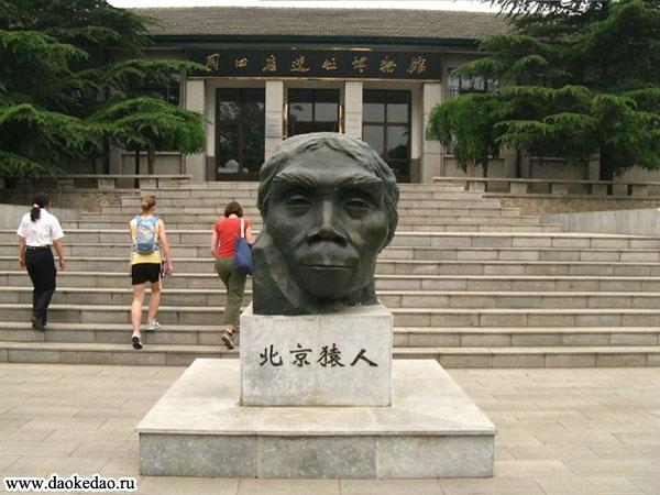 Пекинский человек